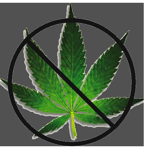 dangers of marijuana